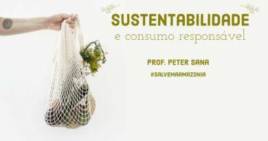 Sustentabilidade e consumo responsável