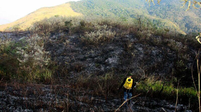 Protetores no combate aos incêndios florestais em Nova Iguaçu