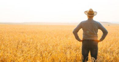 Dia do Fazendeiro